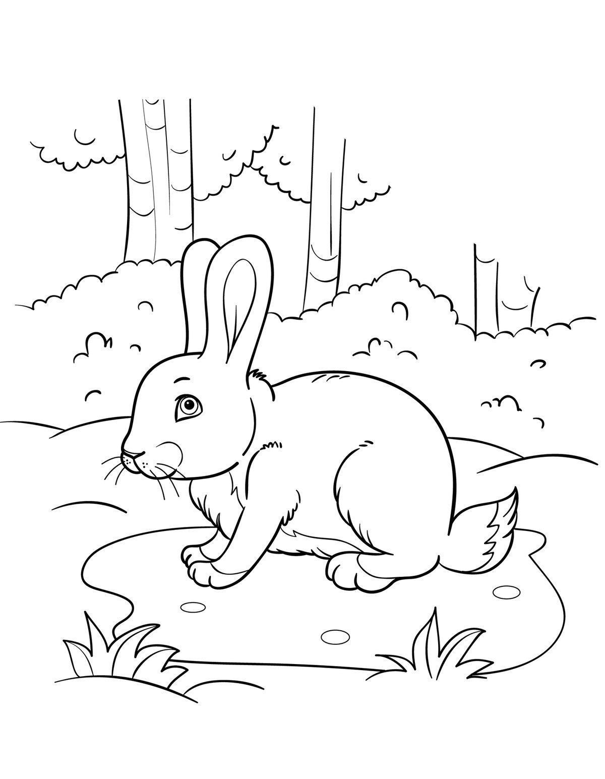 скачать раскраску заяц