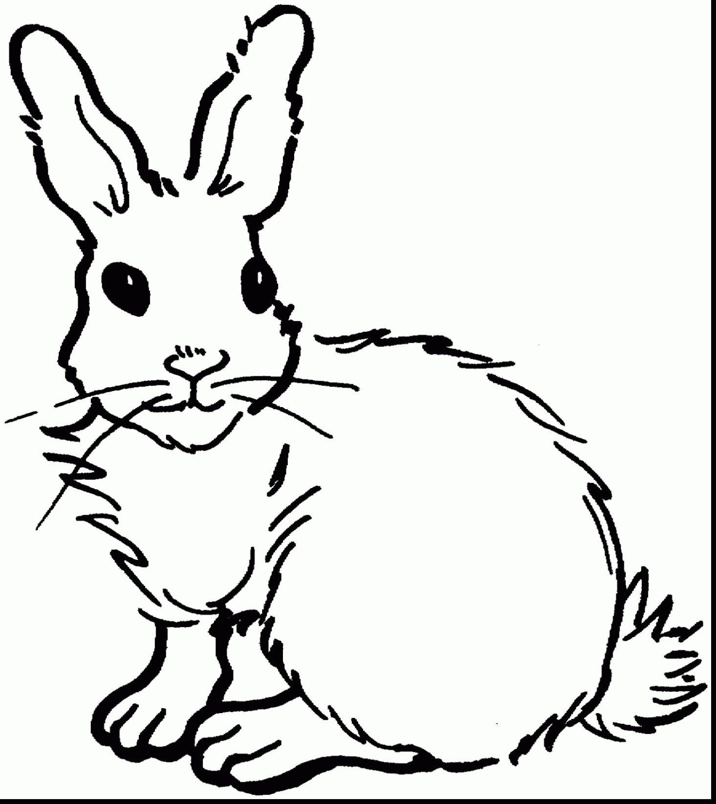 заяц раскраска для детей 3 4 лет
