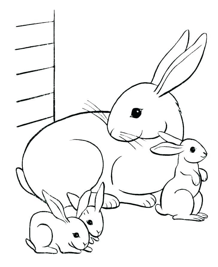 заяц раскраска для детей