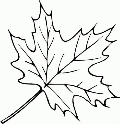 осенний лист раскраска распечатать
