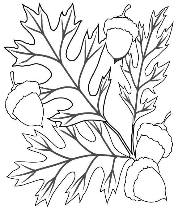 раскраска осень природа для детей