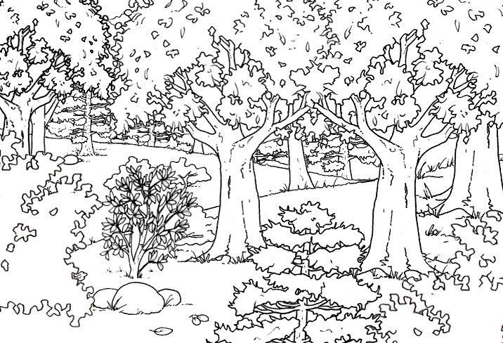 раскраска осенний лес для детей
