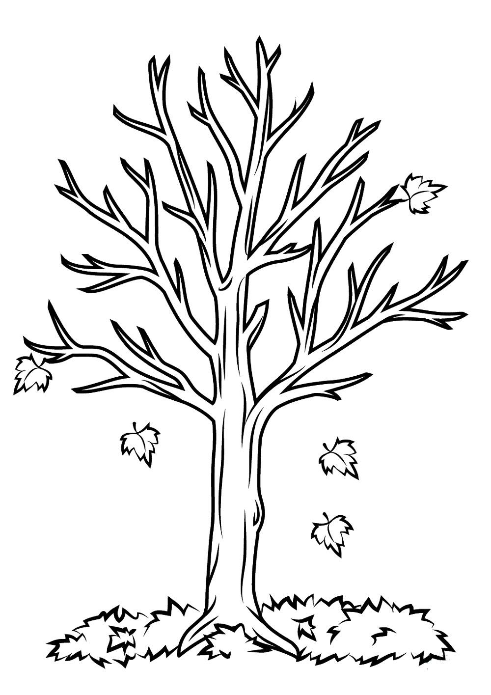 Картинка дерева раскрасить