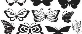 шаблон и трафарет бабочки