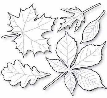 листья из бумаги шаблоны для вырезания трафареты распечатать
