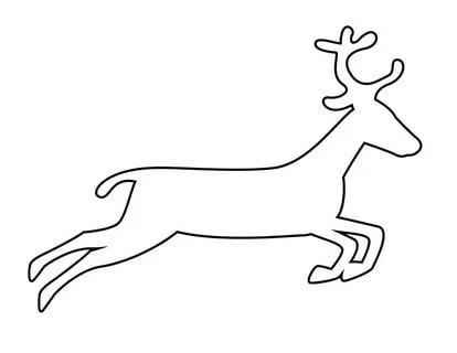 шаблоны диких животных олень распечатать