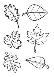 шаблоны листьев для вырезания из бумаги распечатать трафареты