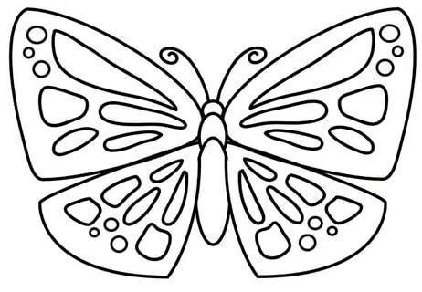 трафарет бабочки из бумаги шаблоны распечатать