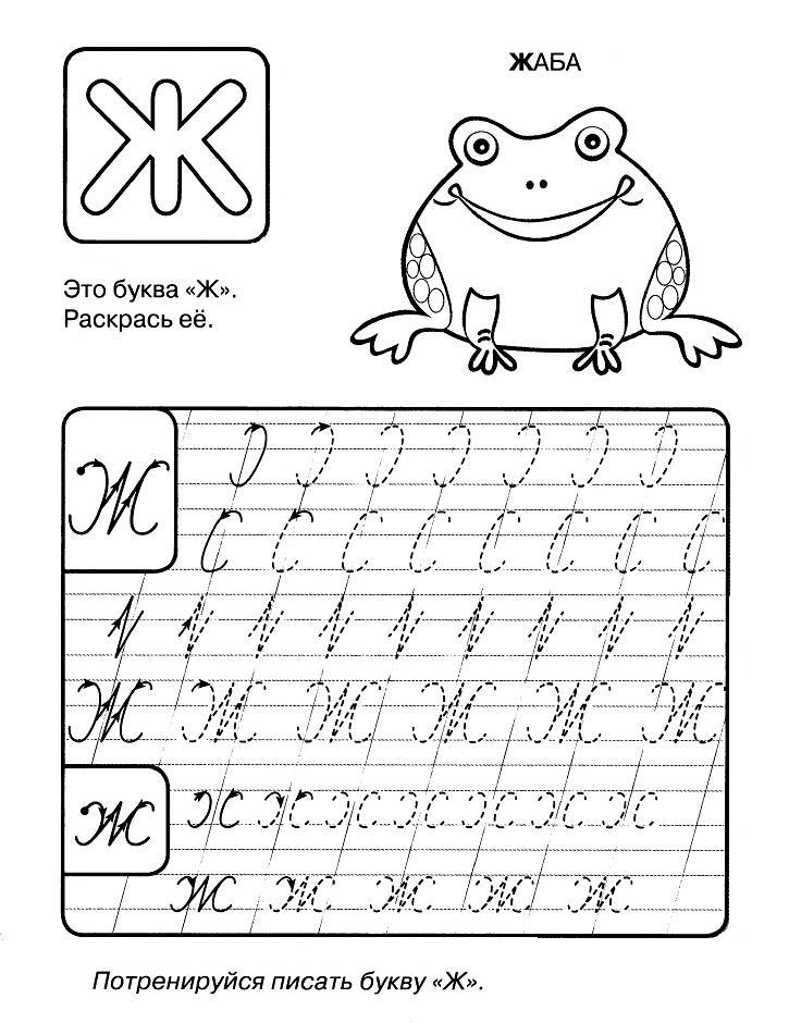 раскраски для детей прописи буква Ж распечатать бесплатно