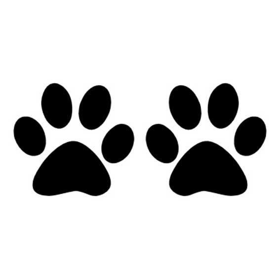 шаблон лапки кошки трафарет распечатать