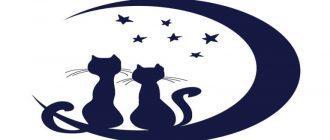 Шаблон и трафарет кошки для вырезания