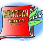 Раскраска Красная книга для детей распечатать бесплатно