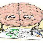 Раскраска Мозг человека распечатать бесплатно