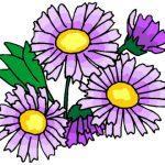 Раскраска Цветы распечатать бесплатно